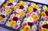 花と緑の山口生花