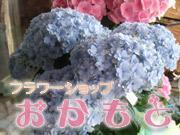 おかもと花店