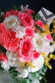 さまざまな感動のシーンにNierの花を・・・