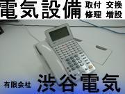 有限会社 渋谷電気