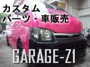 GARAGE-Z1