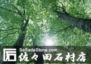 株式会社 佐々田石材店
