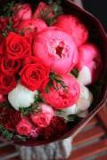 fleur de Nier(フルール ド ニアー)