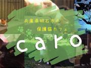 猫カフェ カーロ