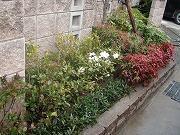 マンションやアパートの植木管理もお任せください。